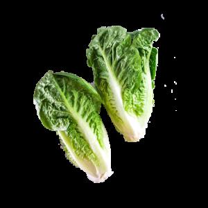 Lettuce Little Gem x2