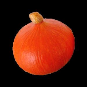 Squash Red Onion
